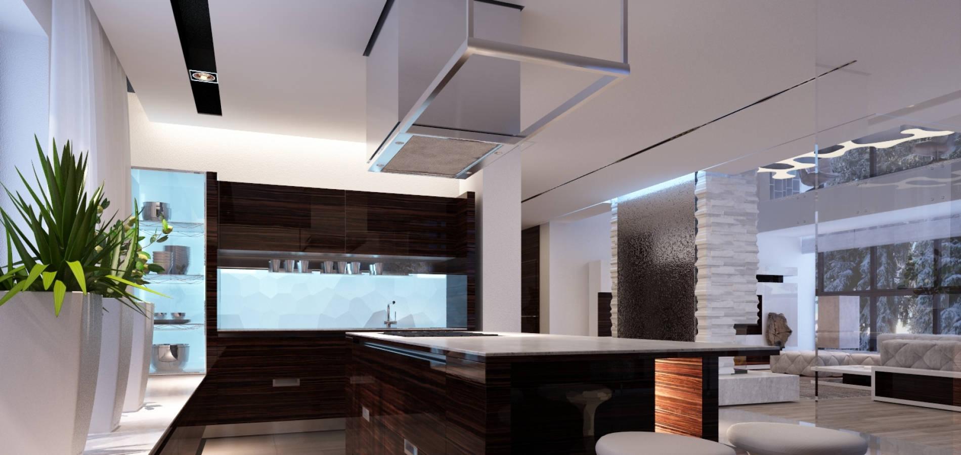 Кухня суміщена з вітальнею в шпоні ALPI H_409